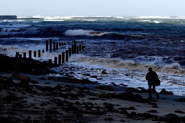 Thilo Schmidt auf Helgoland. Foto: Lilo Tadday